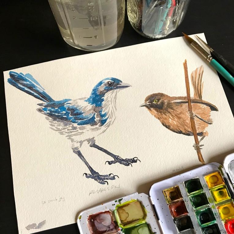 BirdBird2a