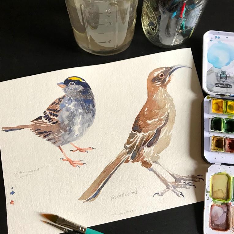 BirdBird3a