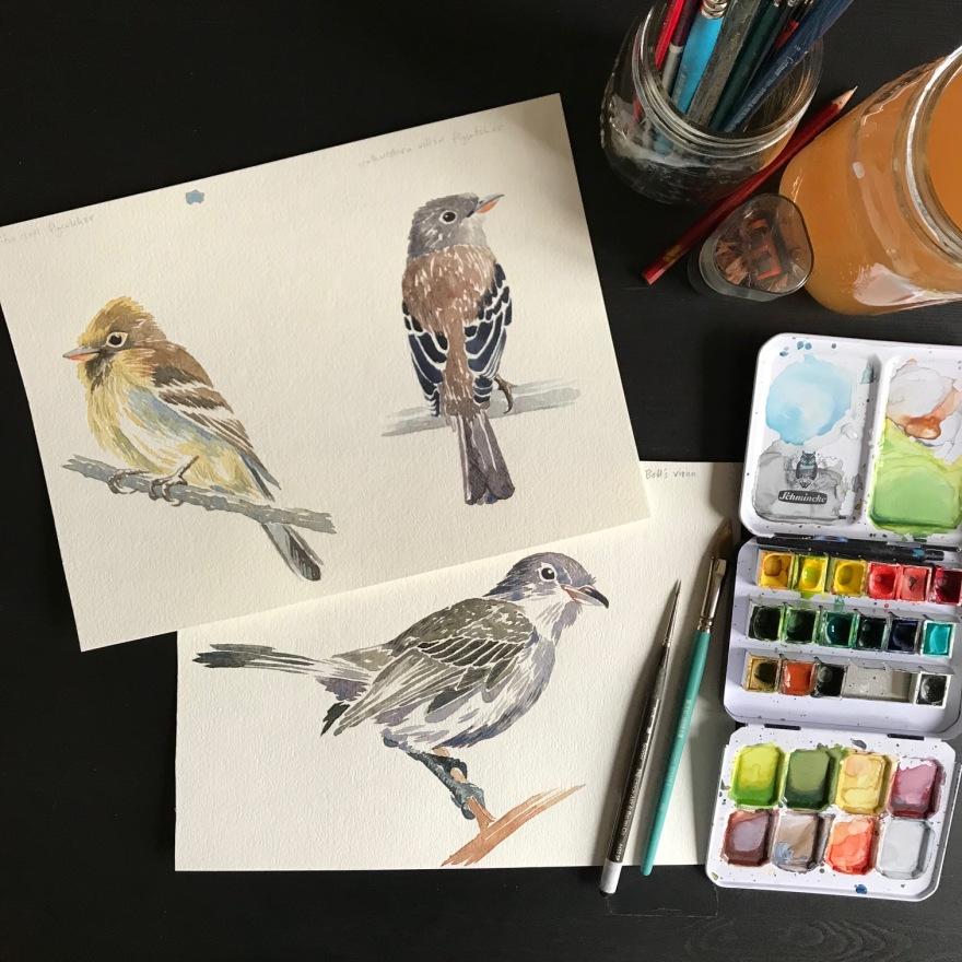 BirdBirdBird