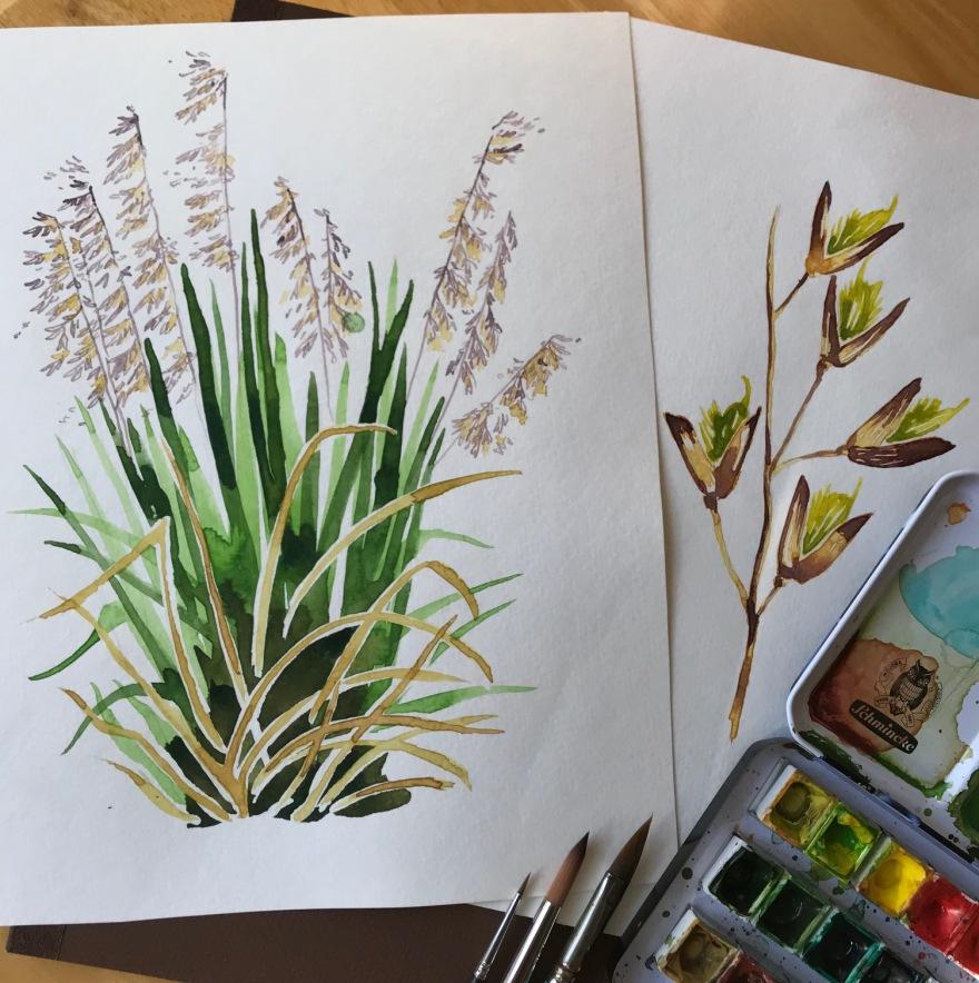 PerennialVeldtgrass_2018Mar10